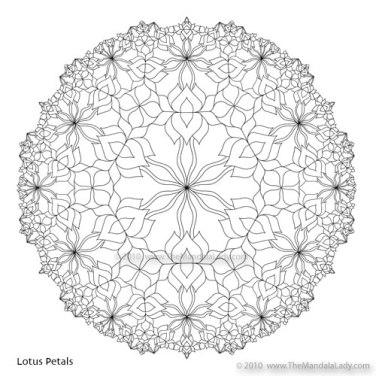 Lotus Petals
